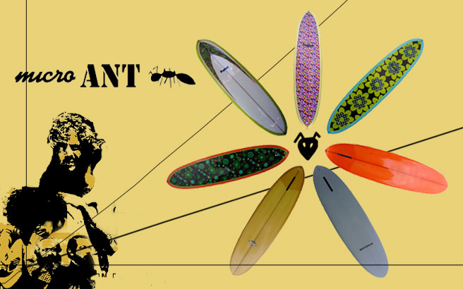 Fineline Surfboards MicroAnt